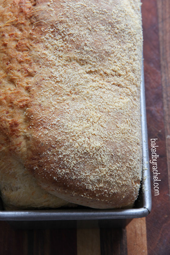 Parmesan Potato Bread Recipe from bakedbyrachel.com