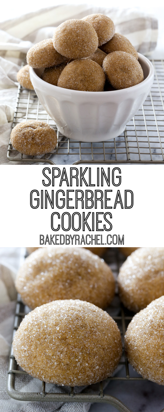 Soft and chewy sparkling gingerbread cookie recipe from @bakedbyrachel
